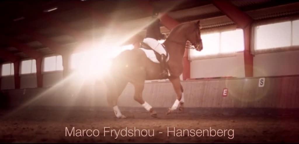 Marco Frydshou Hansenberg